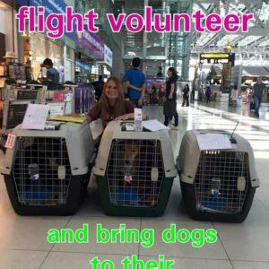 Flight Volunteers Needed!