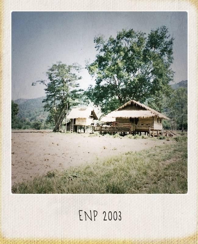 Elephant-Nature-Park-10-year-1