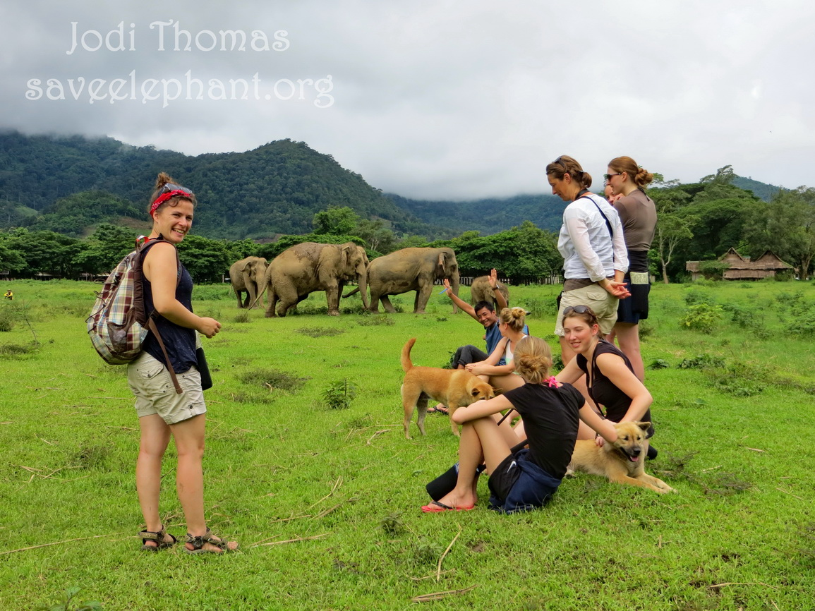 ENP volunteers enjoy an afternoon out elephant watching.